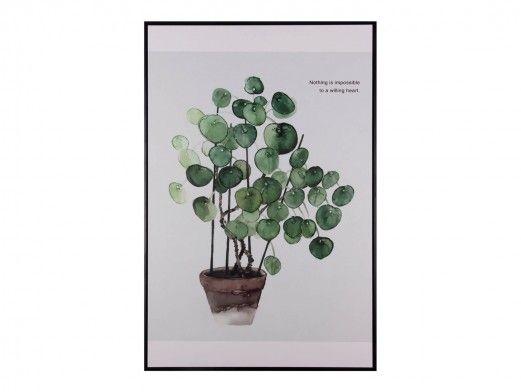 Cuadro planta